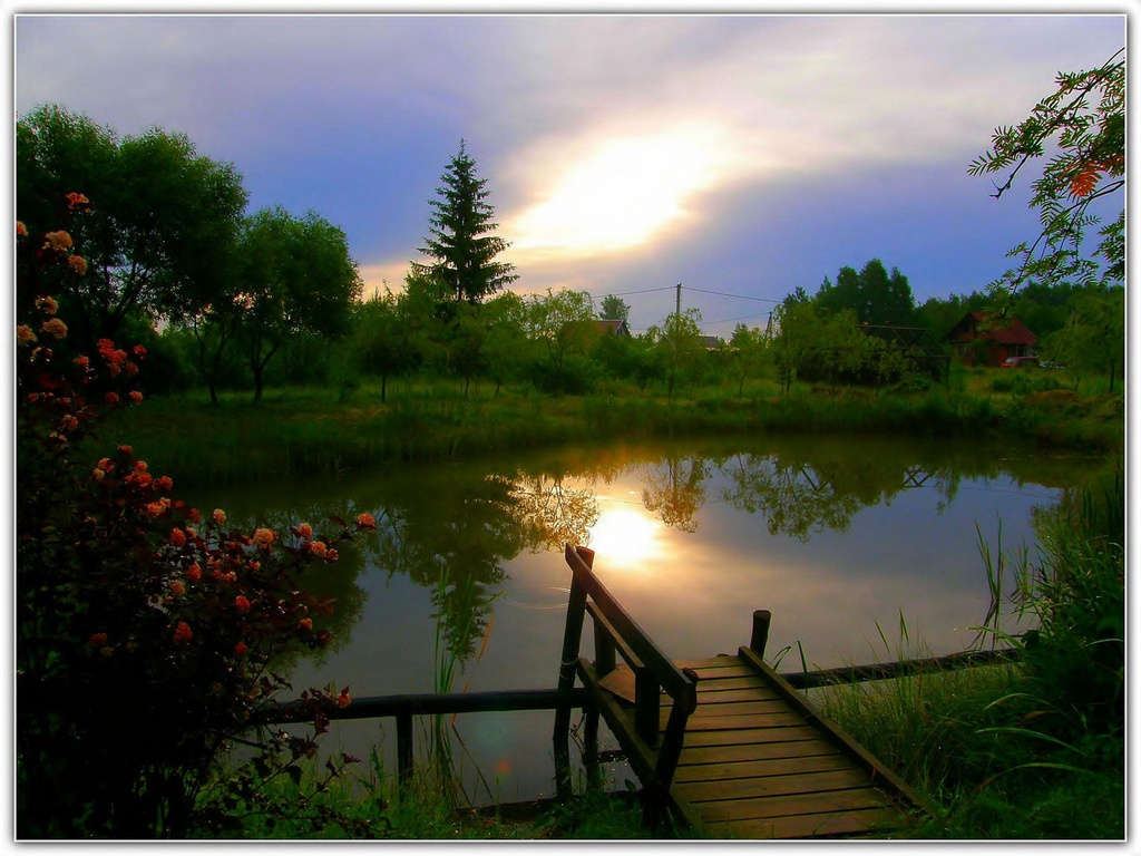 природа деревня фото