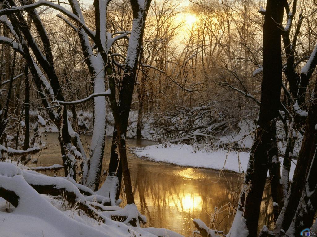 Фото на аву зима - 1