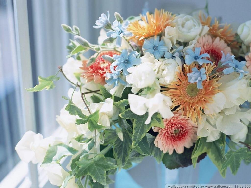 Праздничные цветы картинки 3