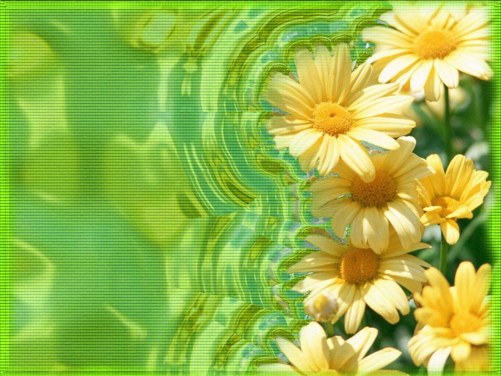 Красивые картинки цветы с надписями 6