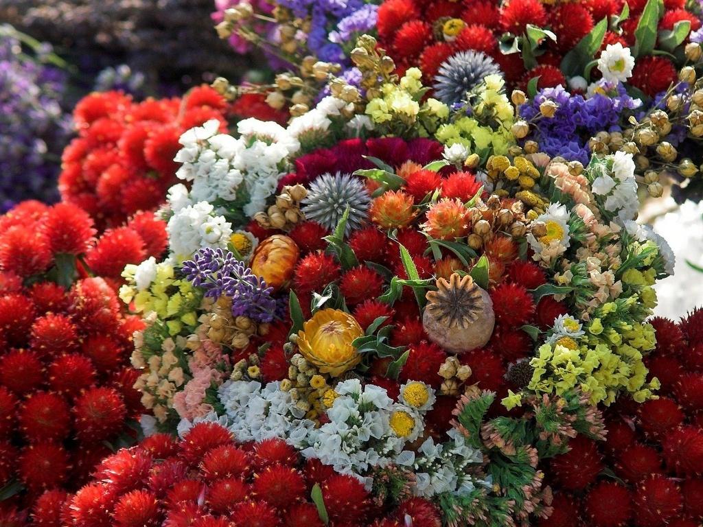 Букет цветок картинки 4