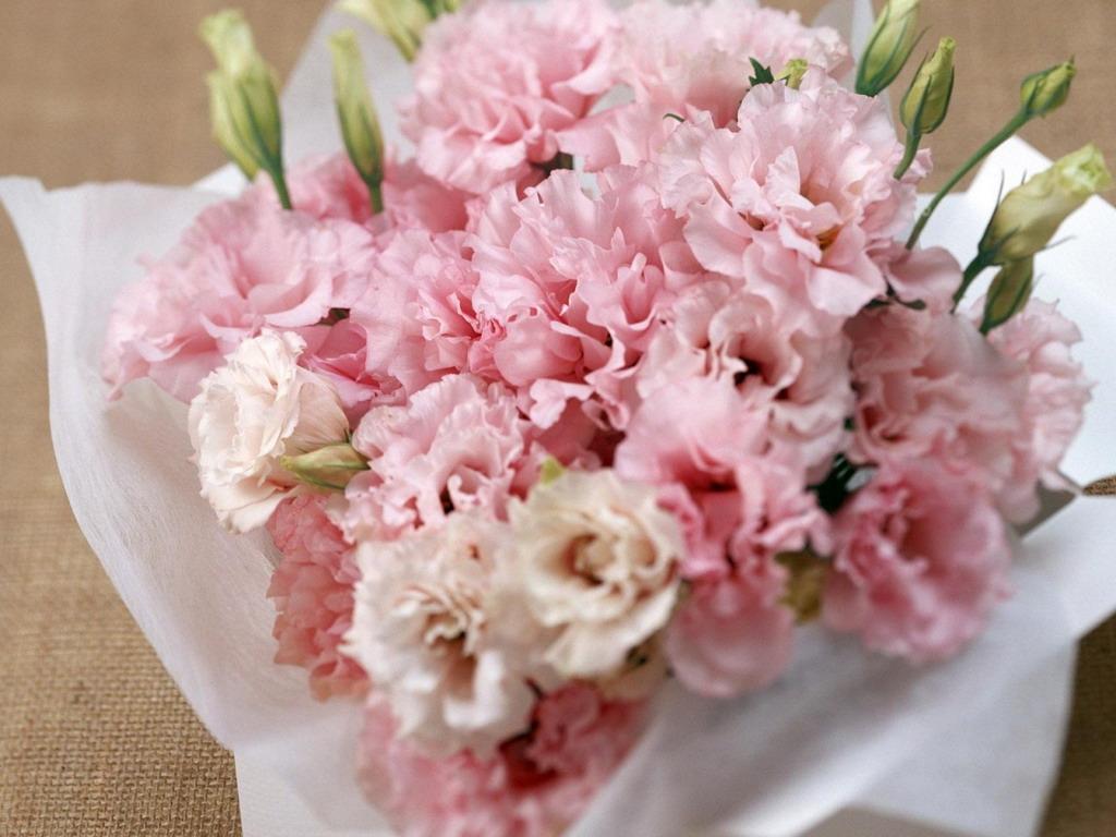 Праздничные цветы картинки 6