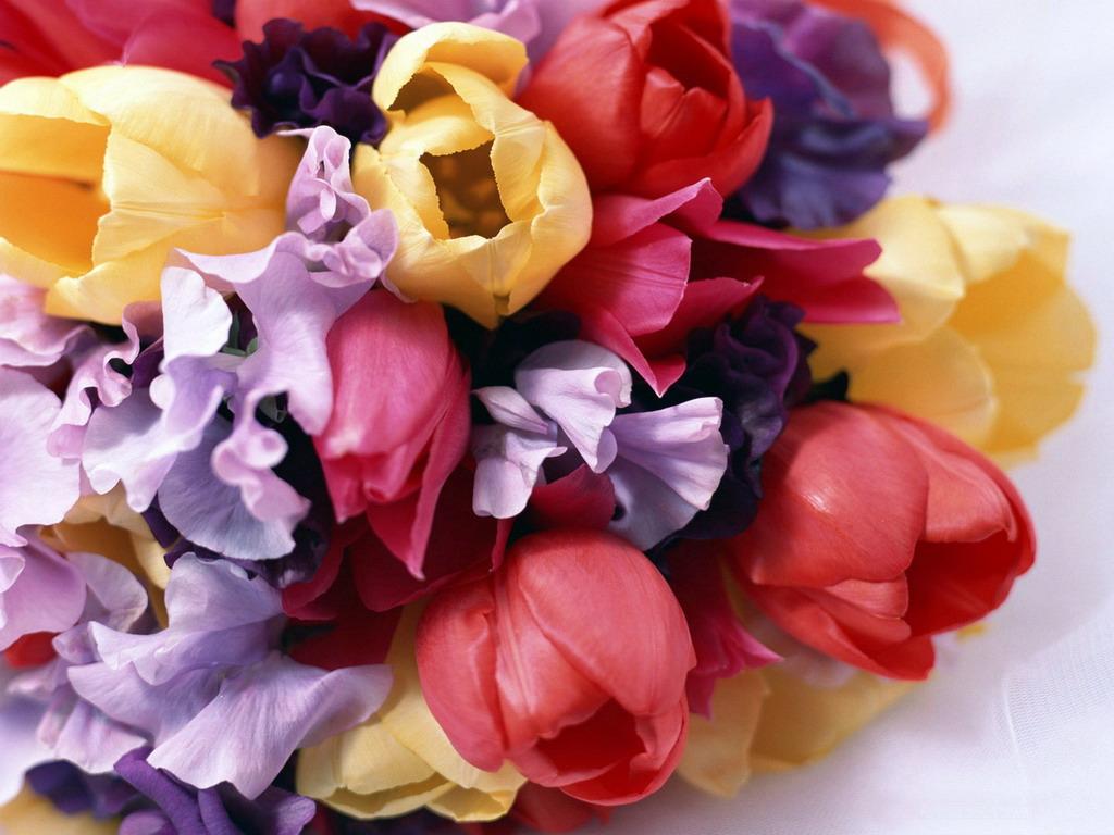 Цветы в машине фото 7