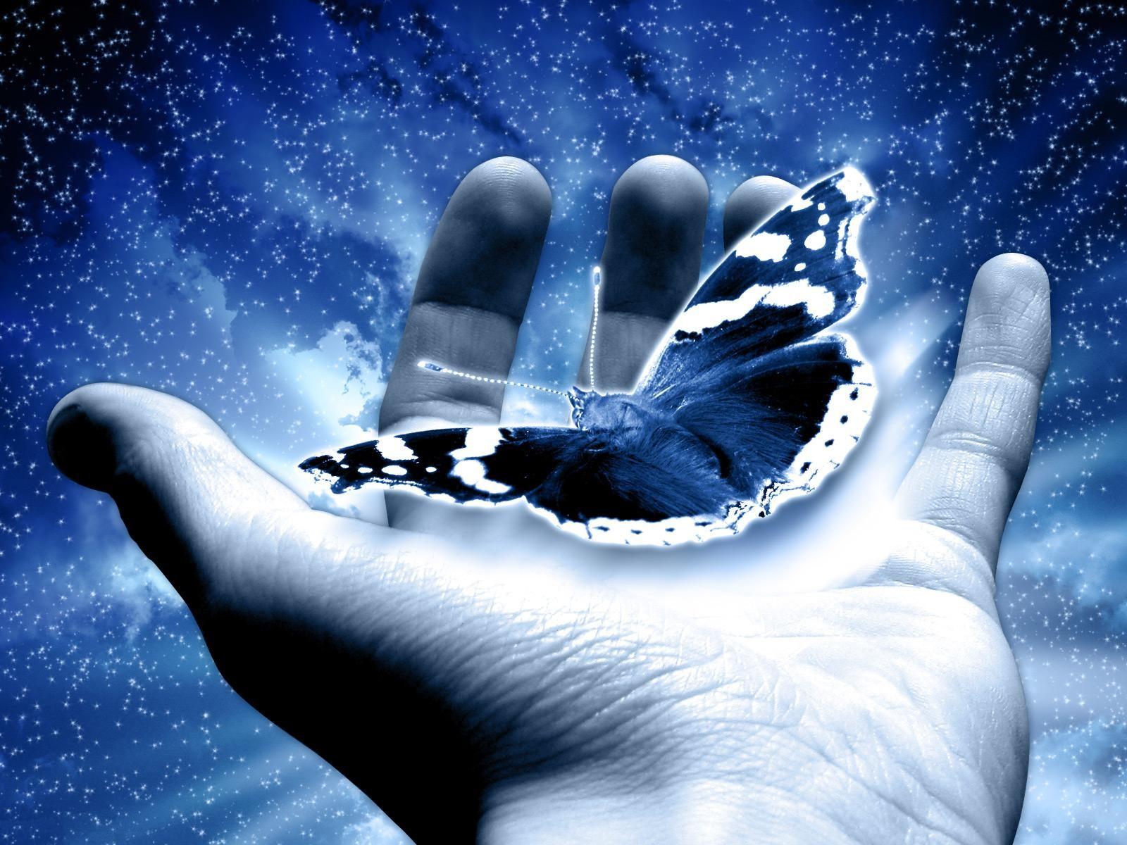 Бабочка в руке картинки красивые