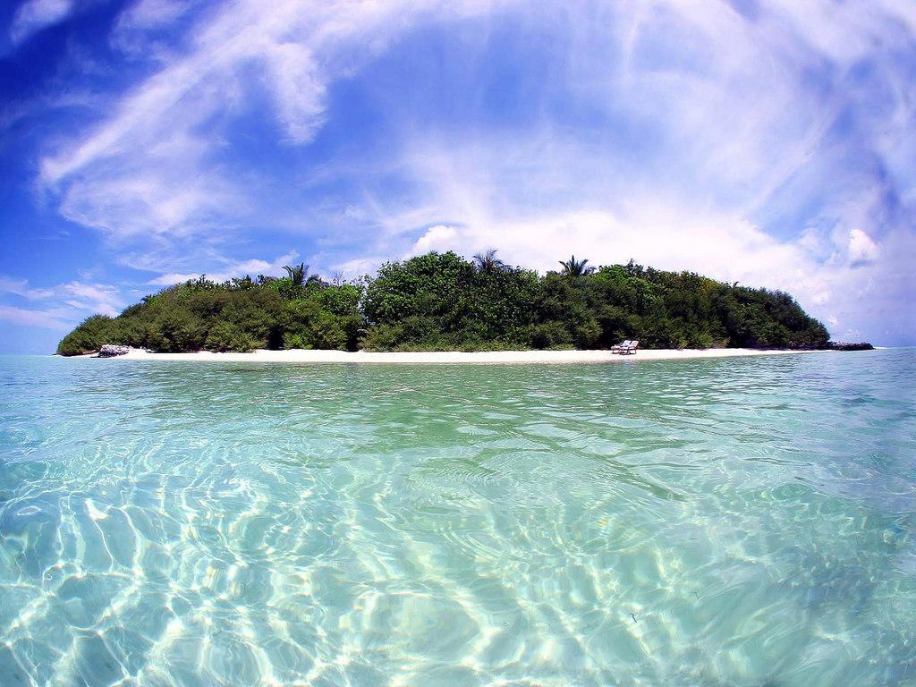 рахманинов романс островок рисунок