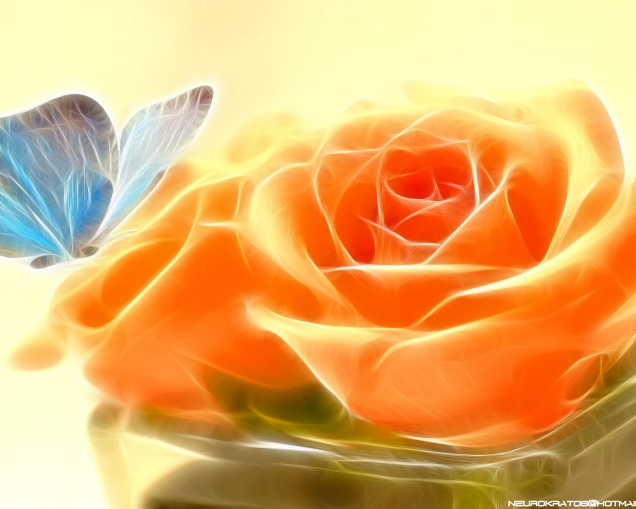 Картинка метелик і троянда 3d картинки