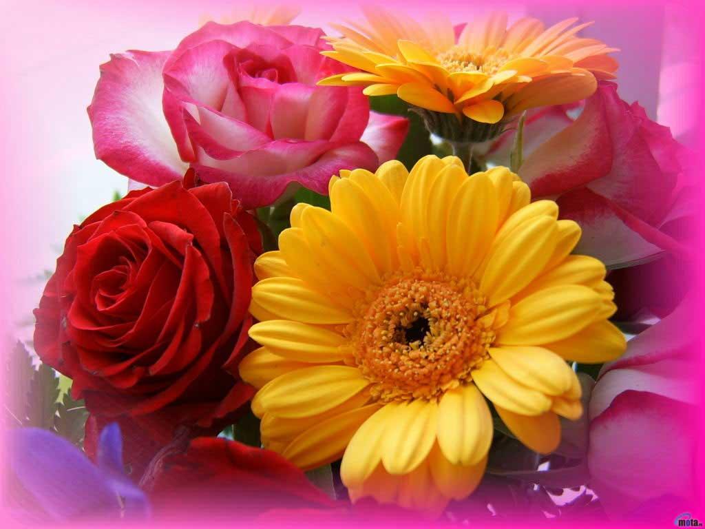 Картинки со цветами 5