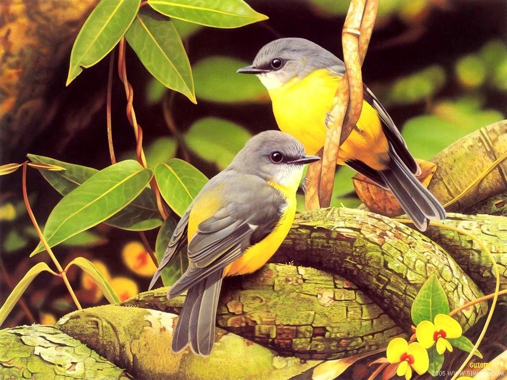 Картинка маленькі пташки картинки і