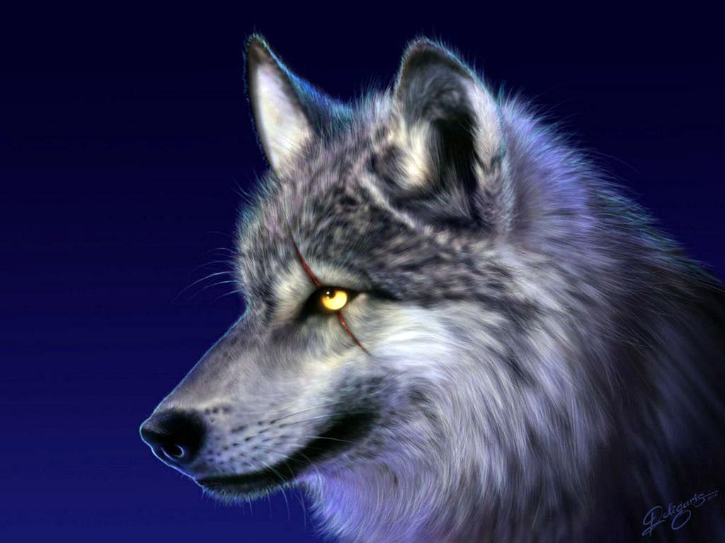 Волк 3d красивые заставки на рабочий