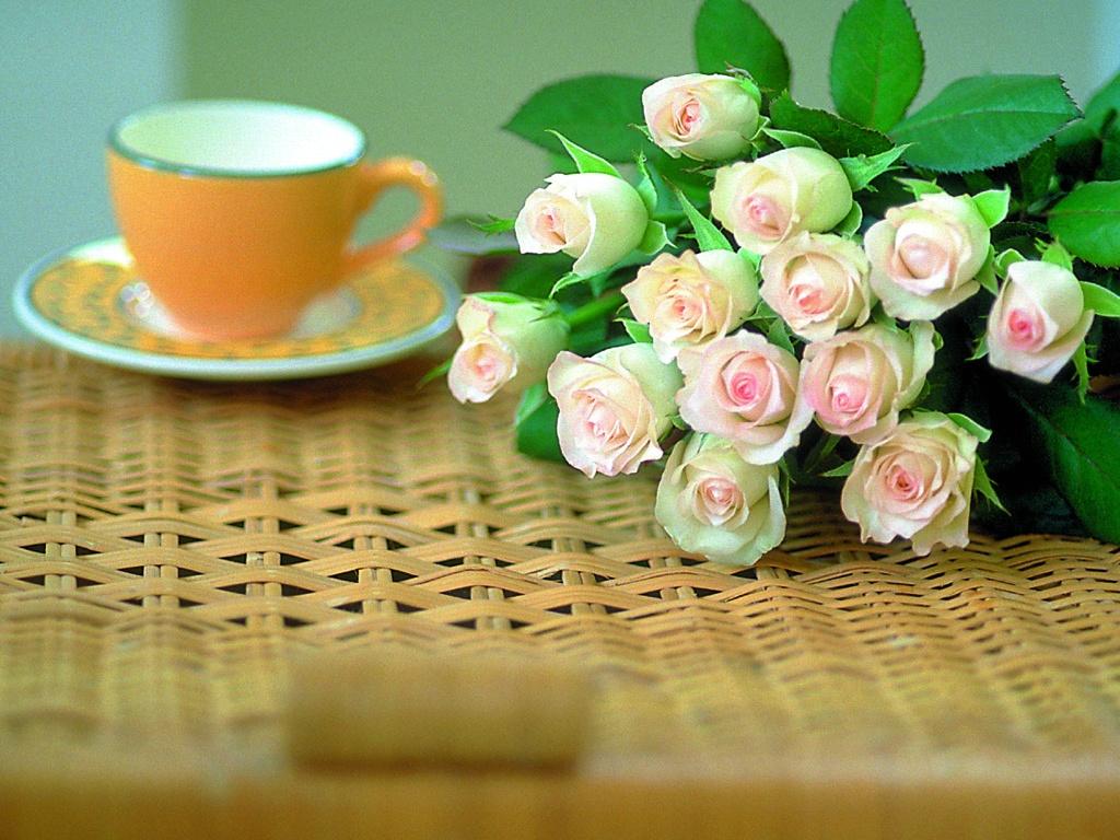 С добрым утром цветы картинки 6