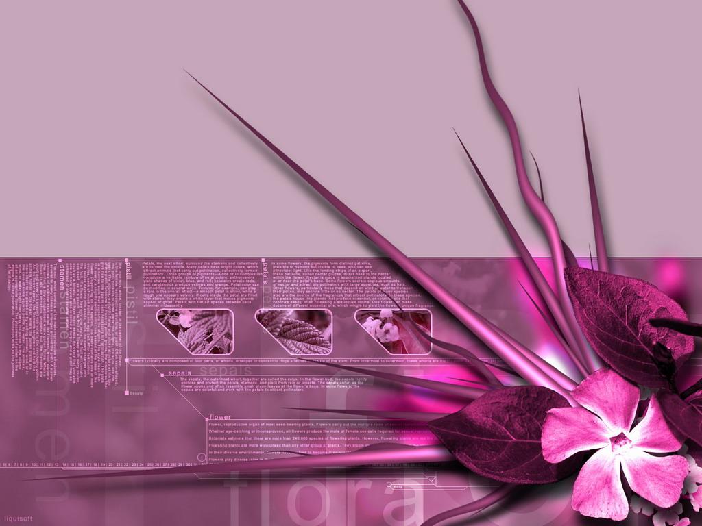 Картинка абстракція з рожевих квітів