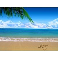 нарисованное картинки море