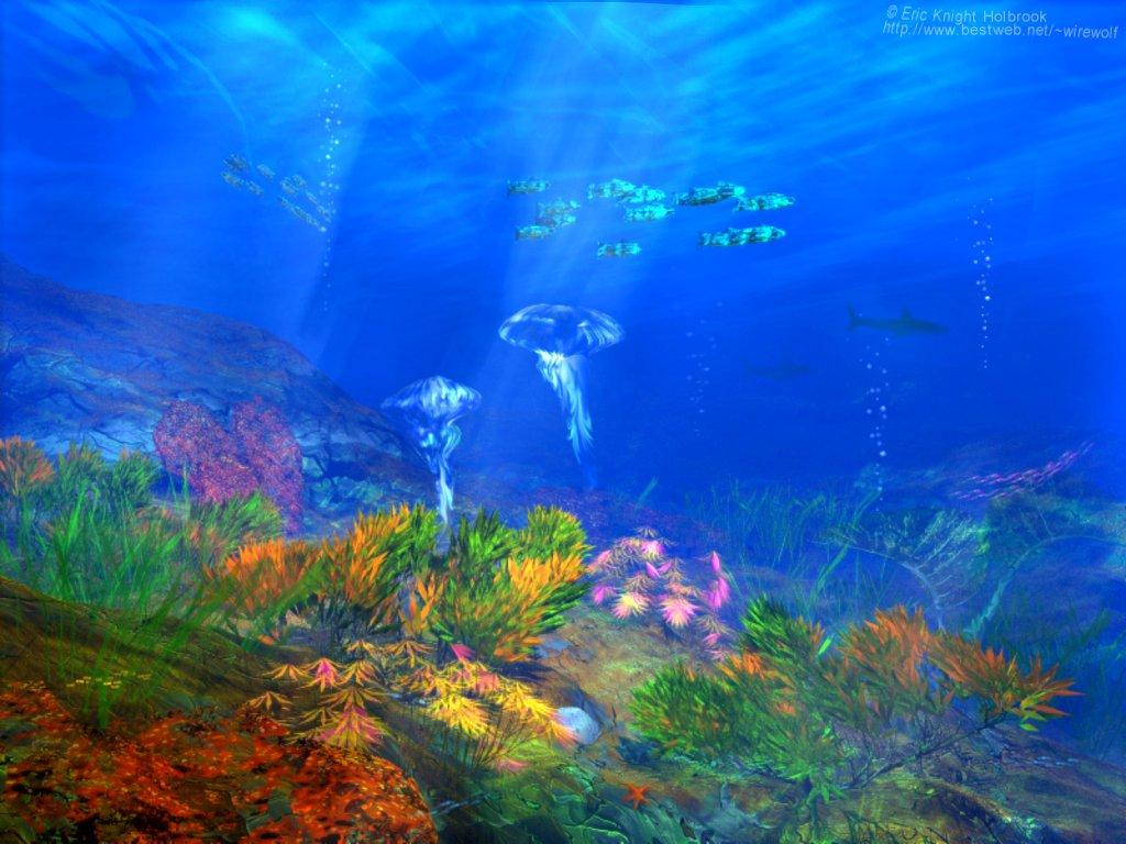 Море под водой обои для рабочего стола